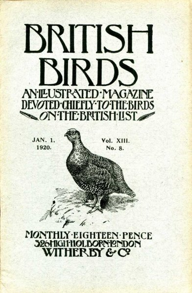 Image for British Birds An Illustrated Magazine devoted chiefly to the birds on the British List, volume XIII No 8, January 1 1920