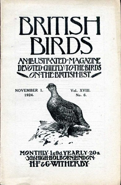 Image for British Birds An Illustrated Magazine devoted chiefly to the birds on the British List, volume XVIII , No 6, November 1, 1924