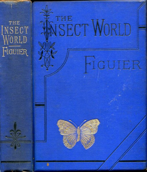 Image for The Insect World : being A Popular Account of the Orders of Insects