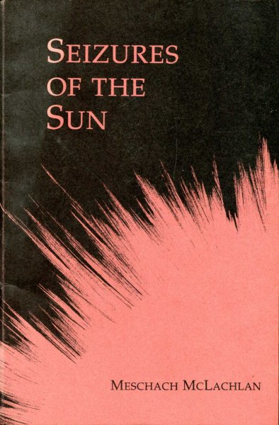 Image for Seizures of the Sun : First Poems