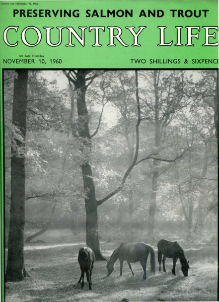 Image for Country Life volume CXXVIII No 3323, November 10 1960