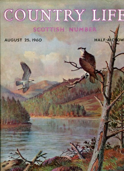 Image for Country Life volume CXXVIII No 3312, August 25 1960 : Scottish Number