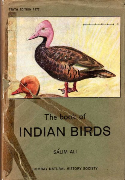Image for The Book of Indian Birds