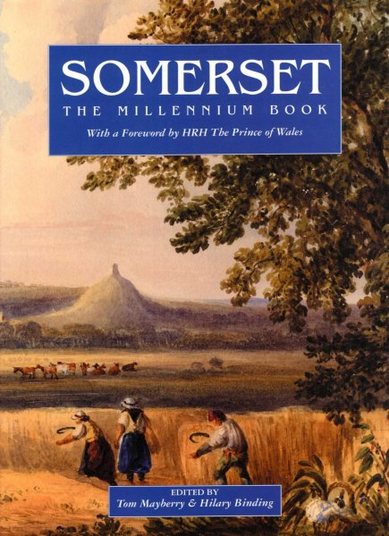 Image for Somerset : The Millennium Book