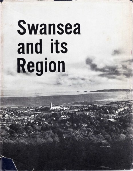 Image for Swansea and its Region