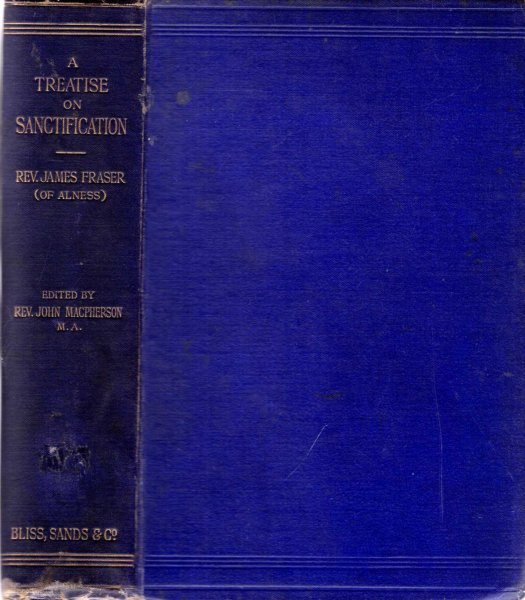 Image for A Treatise on Sanctification