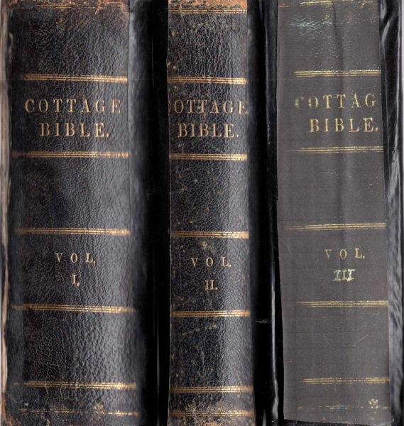 Image for The Cottage Bible and Family Expositor (three volumes complete)