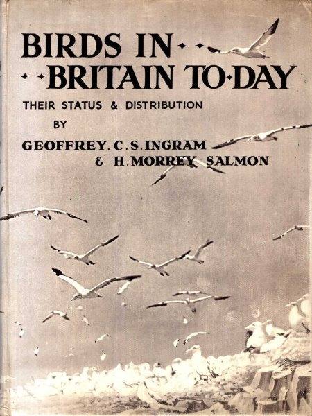 Image for Birds in Britain To-Day