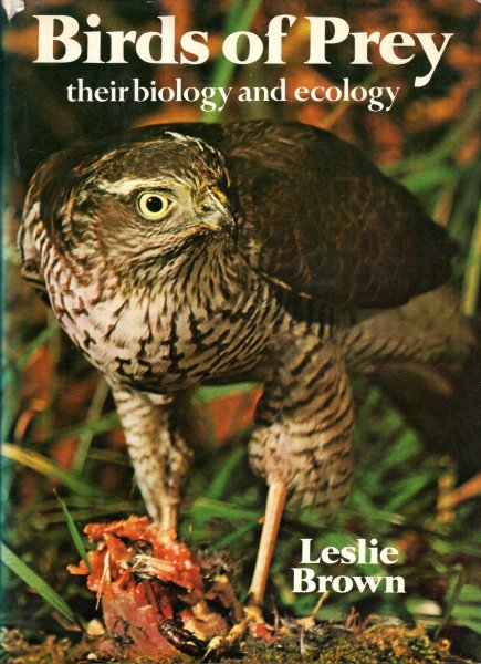Image for Birds of Prey : Their biology and ecology