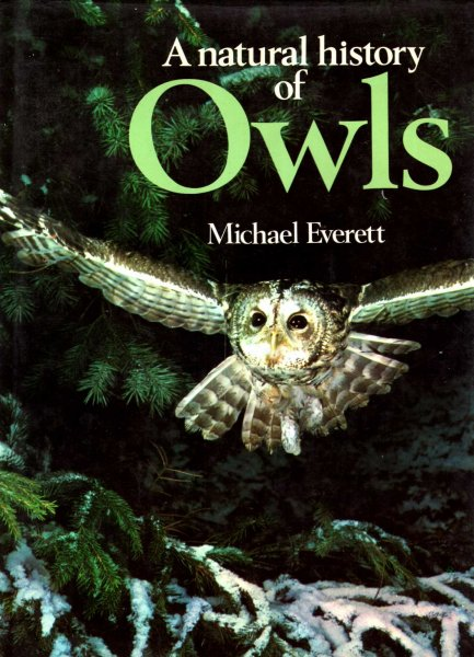 Image for A Natural History of Owls