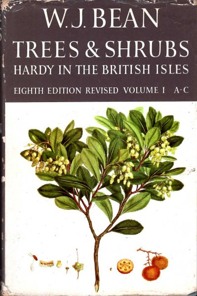 Image for Trees & Shrubs Hardy in the British Isles (Volume I: A-C)