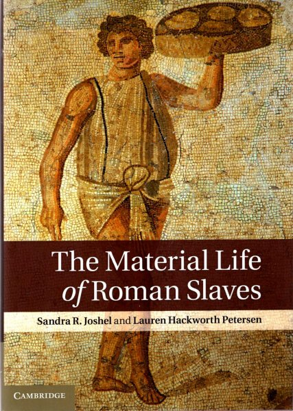 Image for The Material Life of Roman Slaves