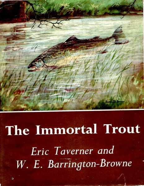 Image for The Immortal Trout