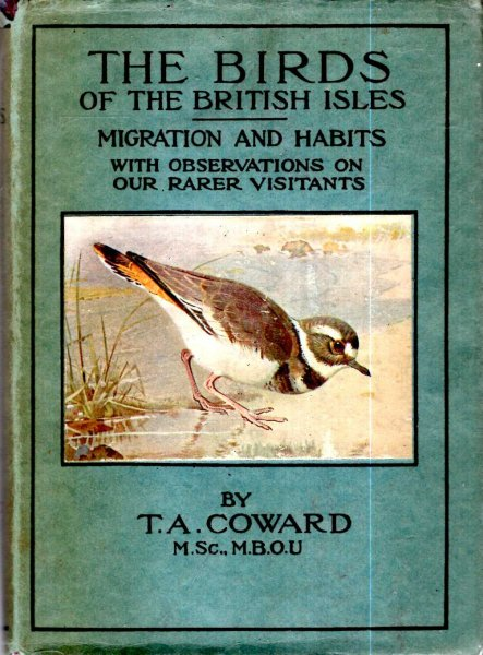 Image for The Birds of the British Isles, Third Series, comprising Their Migration and Habits and on our obersvations on our rarer visitants