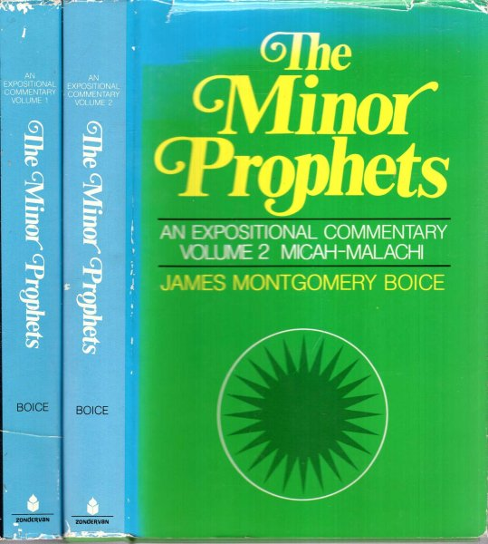 Image for The Minor Prophets : an expositional commentary (two volumes complete)