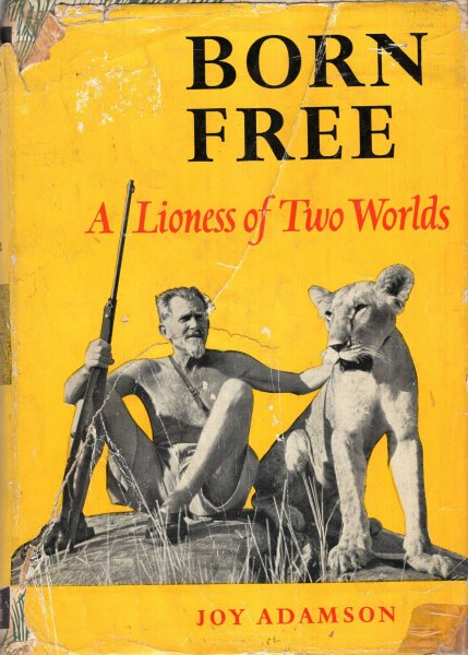 Image for Born Free, a Lioness of two worlds
