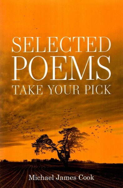 Image for Selected Poems : Take your pick
