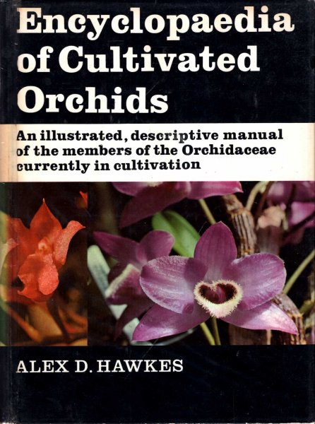 Image for Encyclopaedia of Cultivated Orchids - an illustrated descriptive manual of the members of the Orchidaceae currently in cultivation