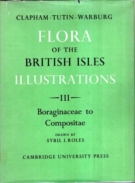 Image for Flora of the Brirtish Isles Illustrations : four volumes complete