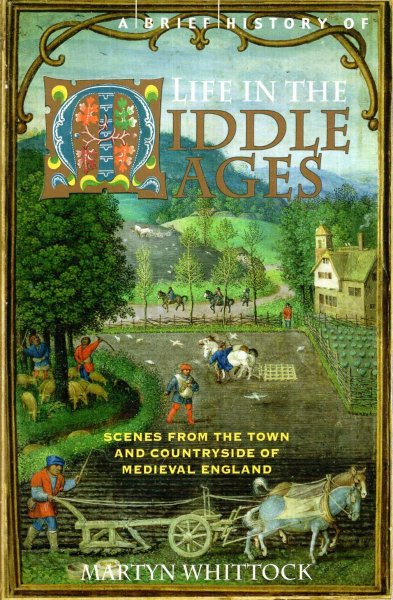 Image for A Brief History of Life in the Middle Ages