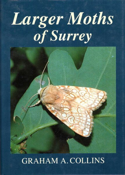 Image for Larger Moths of Surrey