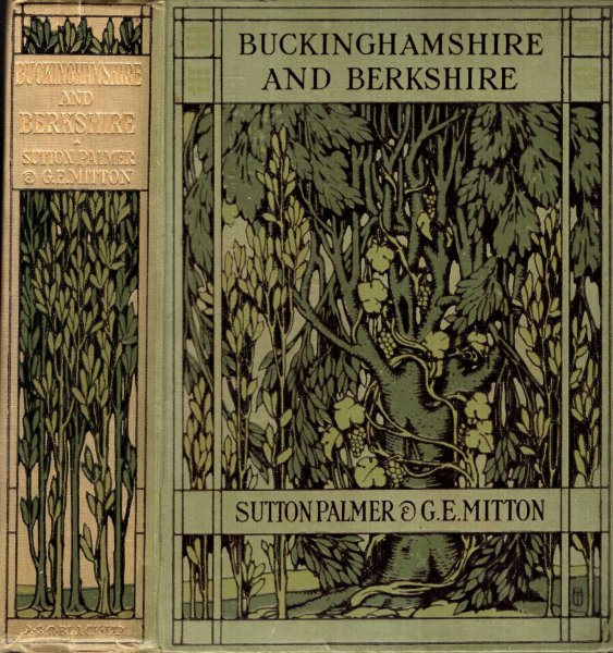 Image for Buckinghamshire and Berkshire painted and described