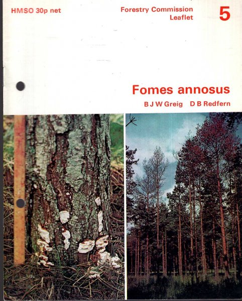 Image for Forestry Commission Leaflet No 5 : Fomes annosus