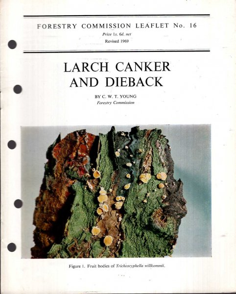 Image for Forestry Commission Leaflet No 16 : Larch Canker and Dieback