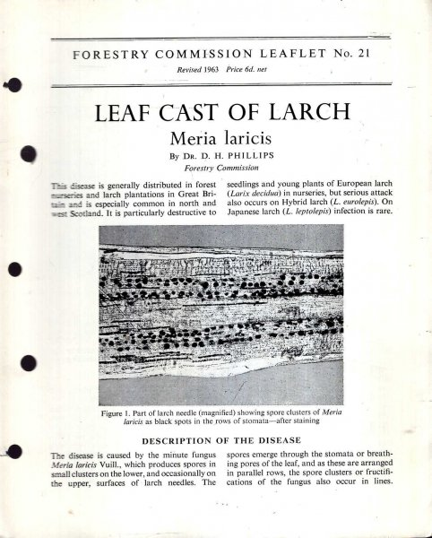Image for Forestry Commission Leaflet No21 : Leaf Cast of Larch Meria laricis