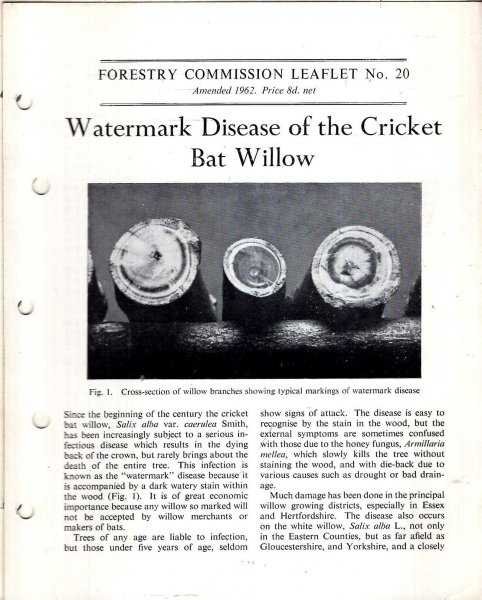 Image for Forestry Commission Leaflet No 20 : Watermark Disease of the Cricket Bat Willow