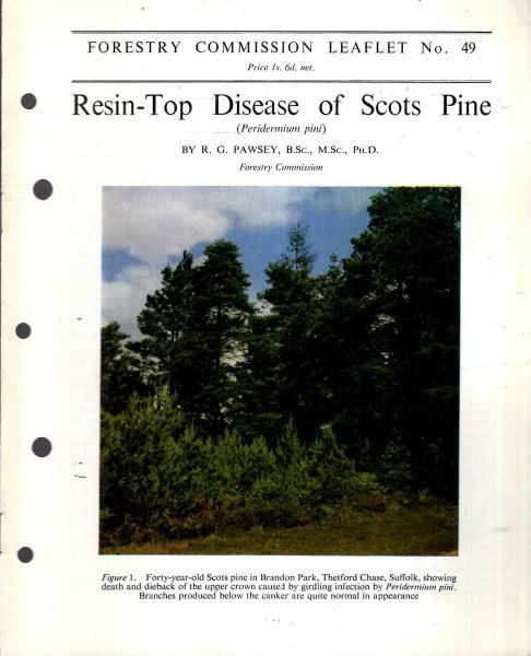 Image for Forestry Commission Leaflet No 49 : Resin-Top Disease of Scots Pine