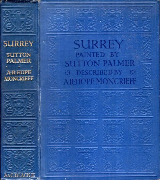 Image for Surrey painted and described
