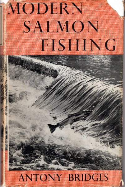 Image for Modern Salmon Fishing