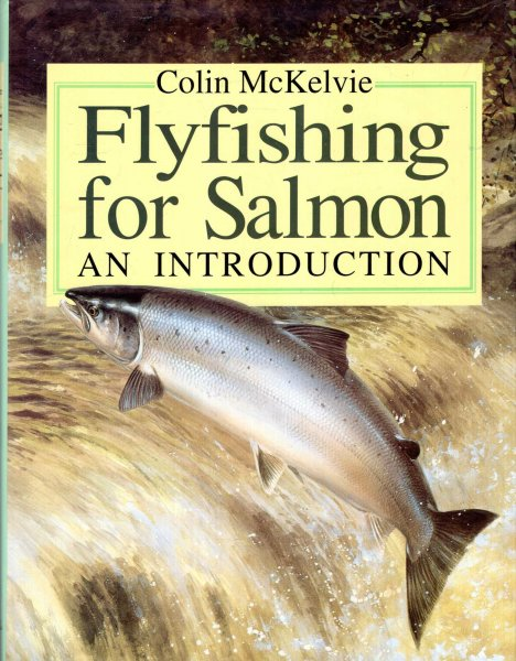 Image for Fly Fishing for Salmon : An Introduction