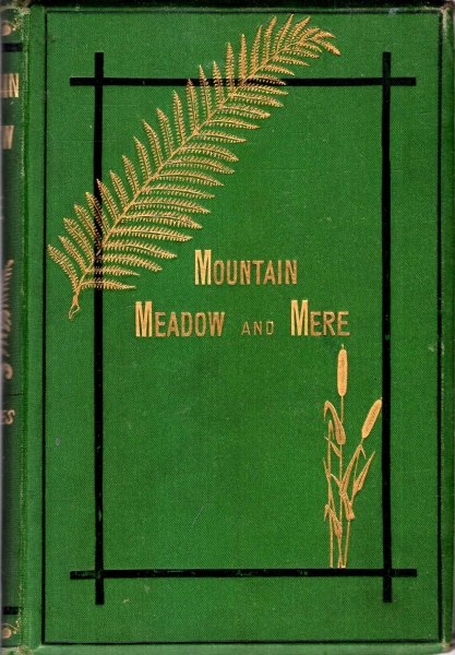 Image for Mountain,  Meadow, & Mere - a series of outdoor sketches of Sport, Scenery, Adventures, and Natural History