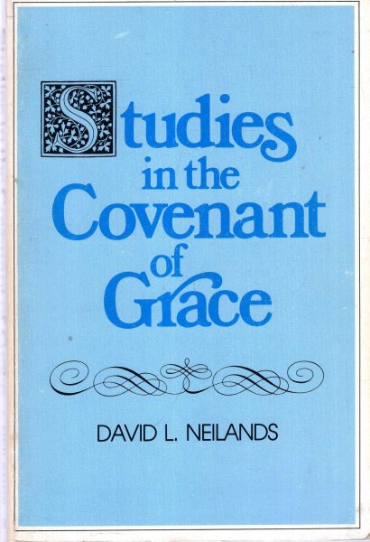 Image for Studies In The Covenant Of Grace