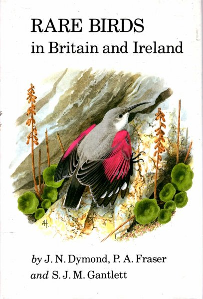 Image for Rare Birds in Britain and Ireland
