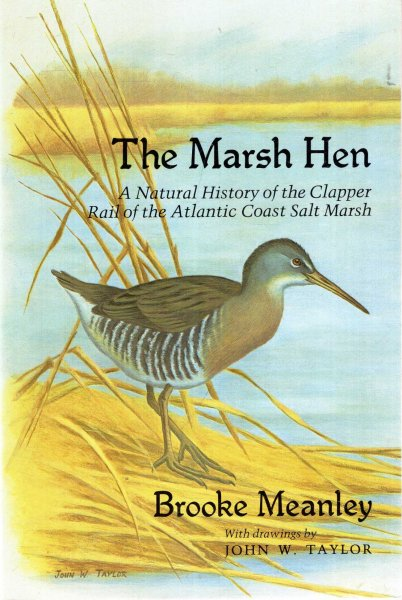 Image for The Marsh Hen : A Natural History of the Clapper Rail of the Atlantic Coast Salt Marsh