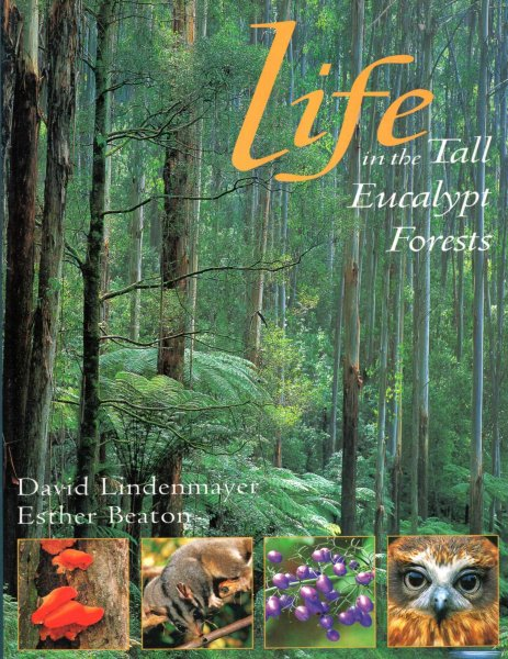 Image for Life in the Tall Eucalypt Forests