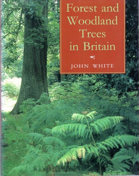 Image for Forest and Woodland Trees in Britain