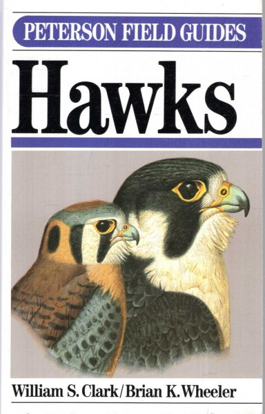 Image for A Field Guide to Hawks : North America (Peterson Field Guide Series, 35)