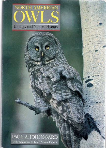 Image for North American Owls : Biology and Natural History