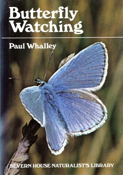 Image for Butterfly Watching