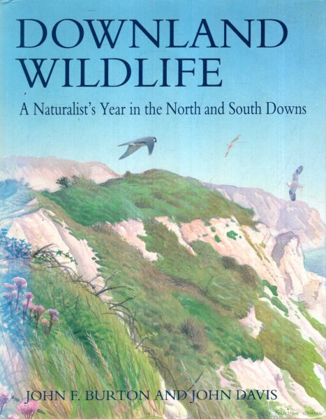 Image for Downland Wildlife : A Naturalist's Year In The North and South Downs