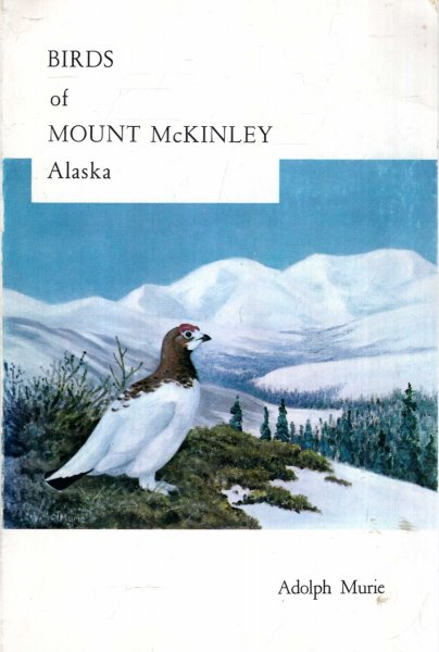 Image for Birds of Mount McKinley National Park, Alaska