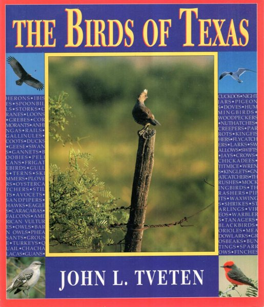 Image for The Birds of Texas