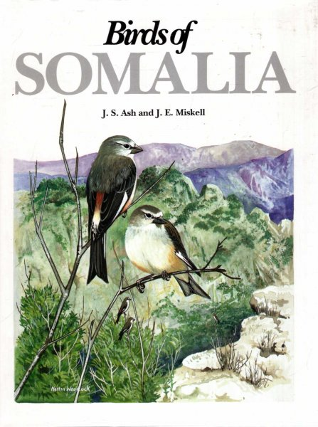 Image for Birds of Somalia