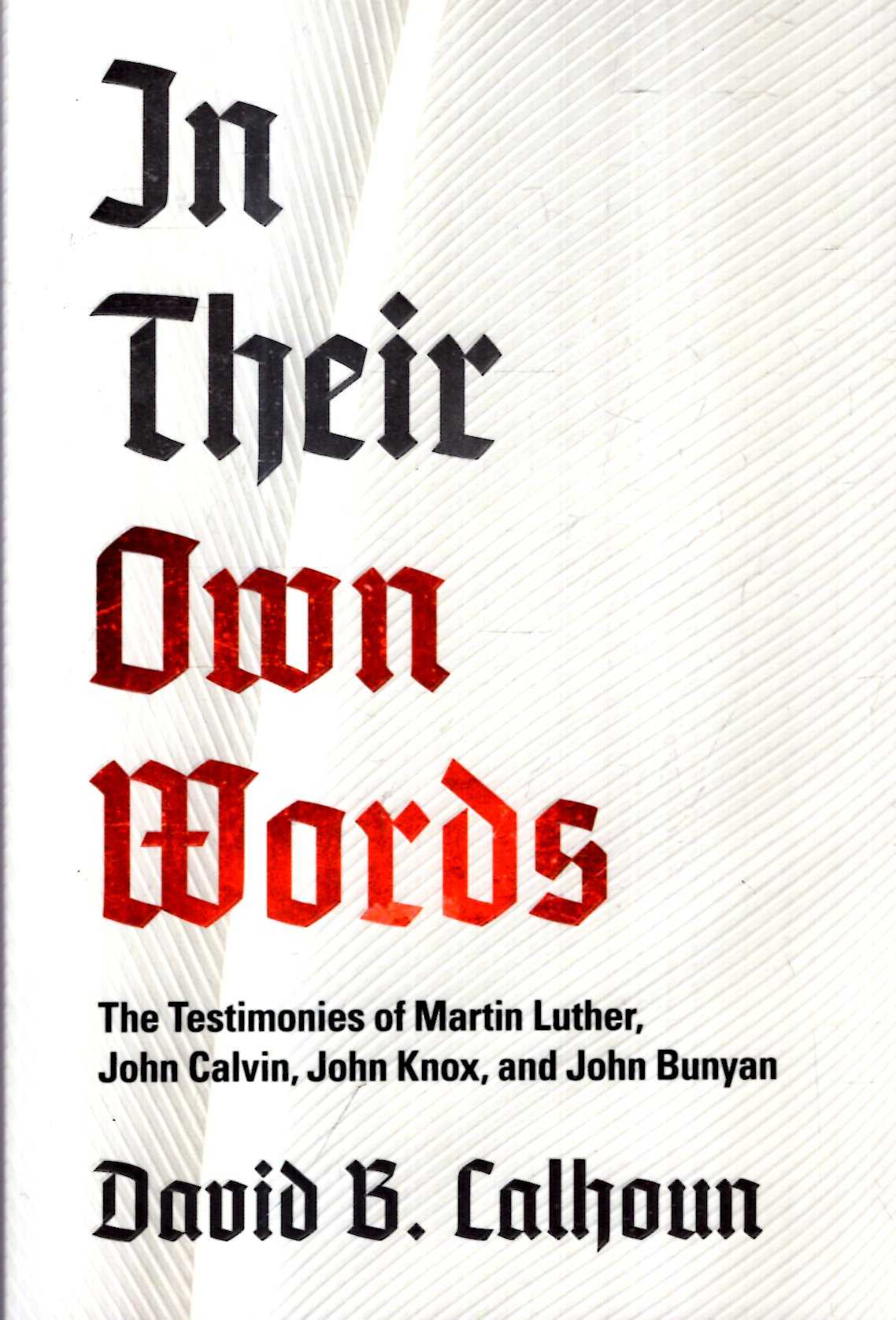 Image for In Their Own Words: The Testimonies of Martin Luther, John Calvin, John Knox, and John Bunyan