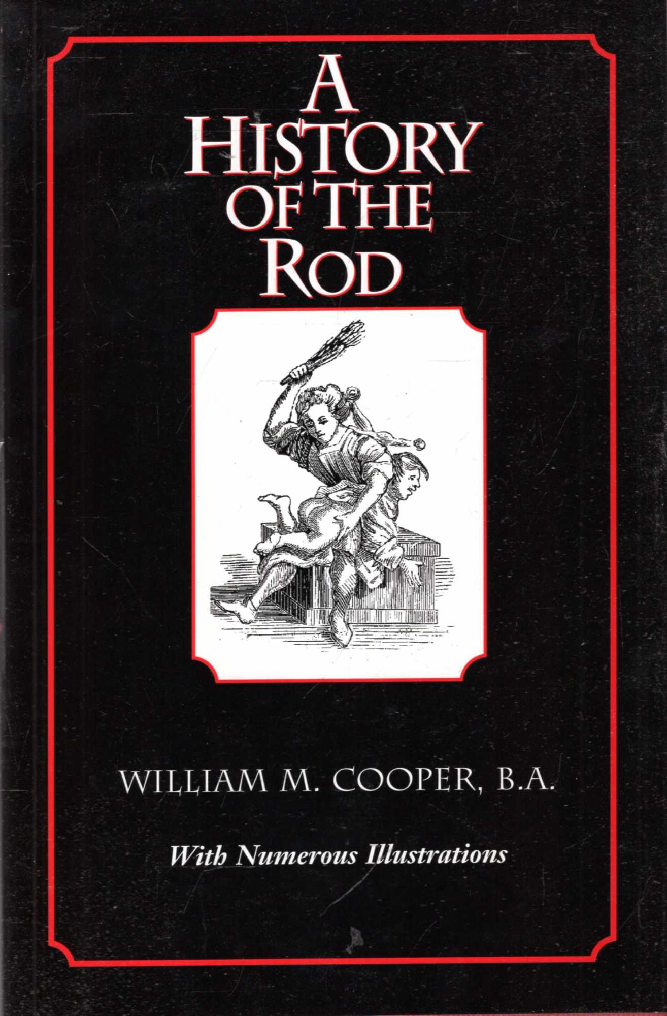 Image for A History of the Rod