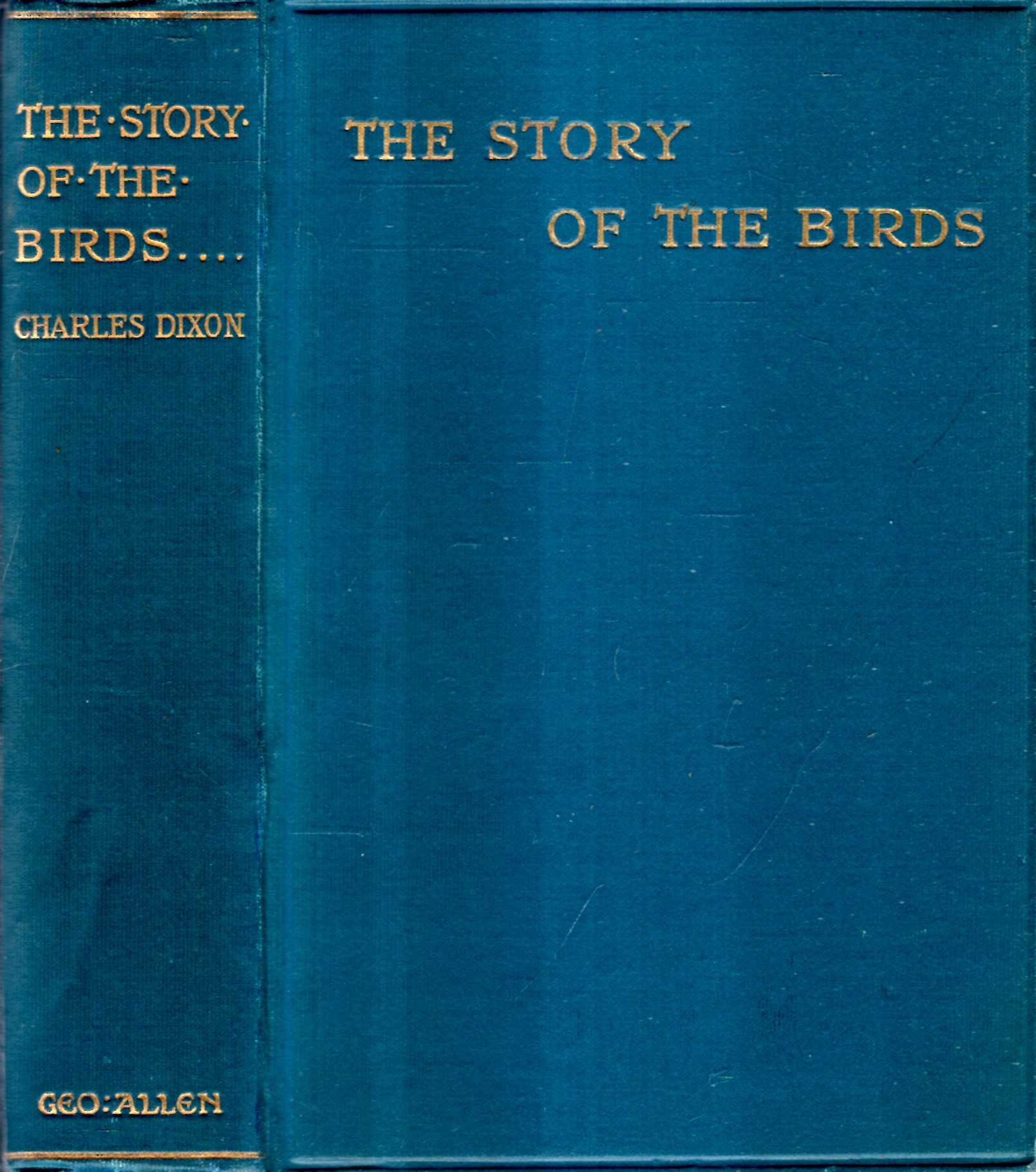 Image for The Story of Birds, being An Introduction to the Study of Ornithology